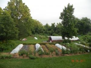 The Farm at Kraut Run